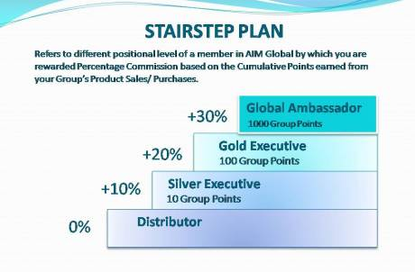 AIM Global Compensation Plan