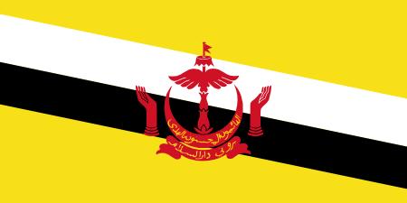 AIM Global Brunei